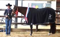 Succes voor Natascha Holtrop tijdens paardensportevenement