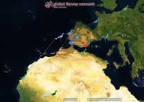 Welkom Kening: Ei doppen met heel Friesland en Nederland voor terugkomst van grutto