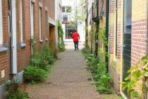 Súdwest-Fryslân vervangt bestrating door groen