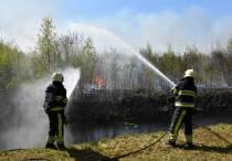 Grotere kans op natuurbrand door aanhoudende droogte