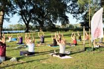 Yoga Flow bij de Potten