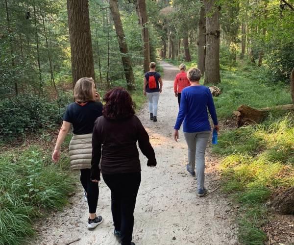Stichting Moeders Ondersteunen Moeders organiseert wandeling in Oranjewoud